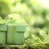 AEROTEC dará un regalo ecológico por su 25 aniversario